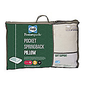 Sealy Pocket Springback Pillow