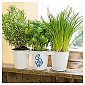 Tesco Metal Triple Windowsill Planter with Anchor Design