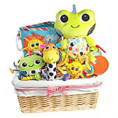 Bright Baby Fun Gift Basket