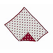 By Carla Raspberry Bloom Reversible Polka Dot Jersey Blanket - Red