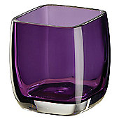 Sanwood Molly Tumbler - Violet