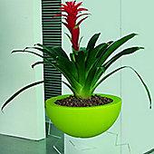 Emporium Positive Design Eebavoglio Flower Tray - Green
