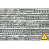 Musical Notes Puzzle