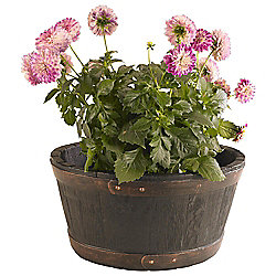Oakwood Barrel Planter