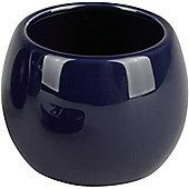 Sanwood Coppalino Tumbler - Blue