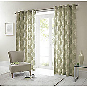 "Woodland Eyelet Curtains W117xL229cm (46x90"") - Green"