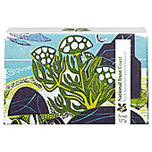 National Trust Coast Soap