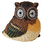 Tesco Brown Owl solar light