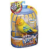 Little Live Pets Bird Cheeky Charlie