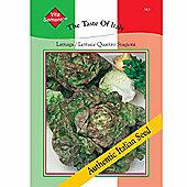 Lettuce 'Quattro Stagioni' (Butterhead) - Vita Sementi® Italian Seeds - 1 packet (6400 lettuce seeds)