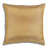 Thomas Frederick Ohio Filled Cushion