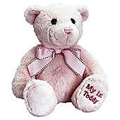 18cm 1st Bear Pink