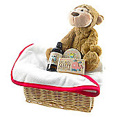 Bright Bath Time Baby Unisex Gift Basket