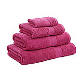Catherine Lansfield Home Egyptian hand towel, 50x85, Raspberry