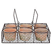 6 aged terracotta pots in wire basket