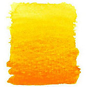 8ml Aquafine Rowney Orange