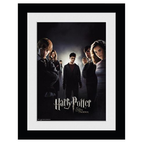 HARRY POTTER ORDER OF THE PHOENIX group 30x40 Framed