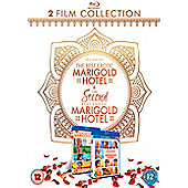 The best exotic marigold hotel & The second best marigold hotel