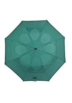 StayDry Windproof Umbrella - Green