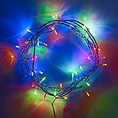 40 Multi Coloured LED Indoor Fairy Lights