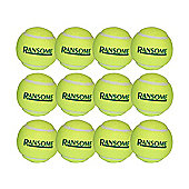 Ransome Tennis Balls Pack of 12