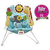 Fisher-Price 2 In 1 Sensory Stages Bouncer