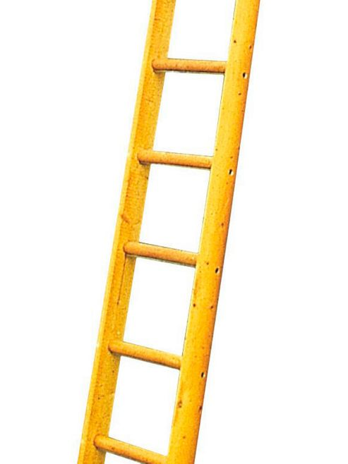 TB Davies Industrial 8.0m (26.2ft) Timber Single Pole Ladder