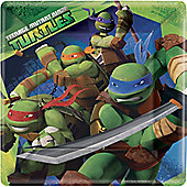 Ninja Turtles Plates - 23cm Paper Party Plates