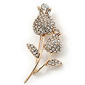 Clear Crystal Double Rose Brooch In Gold Plating - 60mm Length