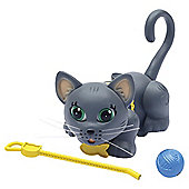 Pet Parade Single Kitten Pack - Chartreux