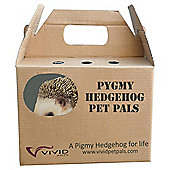 PP Pygmy Hedgehog F Box/8
