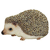 Pet Pals Pygmy Hedgehog
