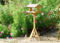Self assembly bird table