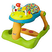 Tippitoes Dream Wheels Multi Functional Walker & Push Along