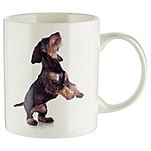 Tesco Photographic Dog Mug Single