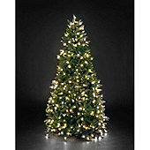 8ft Pre-Lit Louise Fir Green with 600 Warm White LEDs PE Hinged