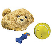 The Happy's Pets Gift Set Bentley the Golden Retriever