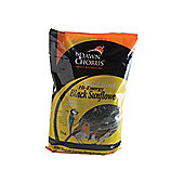 Dawn Chorus 50735 Black Sunflower 1Kg