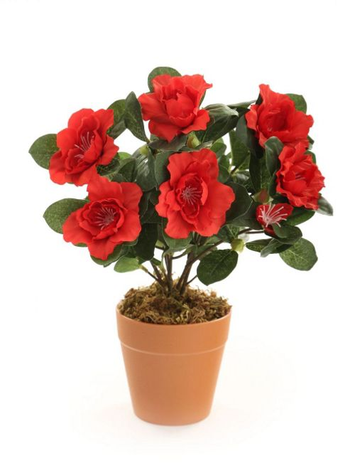 buy artificial 27cm red azalea plug plant from our. Black Bedroom Furniture Sets. Home Design Ideas