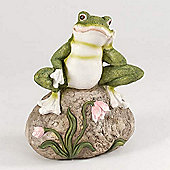 Frog on Rock Garden Ornament