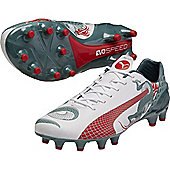 Puma Evospeed Graphic 1.3 Fg Football Boots - White