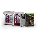 T Rex Dinosaur 13.5 Tog University Bedding Bundle - Double