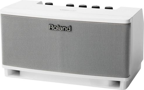 Roland Cube Lite Monitor Amp