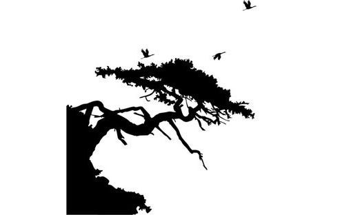 Asian Tree Wall Sticker, Black