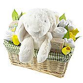 Deluxe Unisex Baby Gift Flower Basket