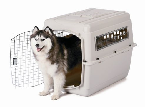 Petmate Vari Traditional Dog Kennel in Bleached Linen - Medium (71.12cm L x 50.8cm W x 53.34cm H)