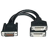 Cables to Go LFH-59 Male to 2 DVI-I Female Cable