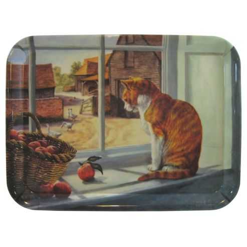 Ginger Tom Cat Tray