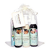 Earth Mama Pregnancy Essentials Gift Bundle