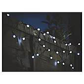 Tesco 100 White Berry Solar String Light